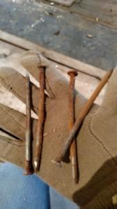 Sample nails